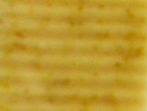 grapefruitorange